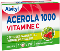 Govital Acerola 1000 à Valenciennes