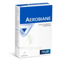Pileje Aerobiane 30 Gélules à Valenciennes