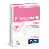 Pileje Feminabiane Cbu 30 Comprimés Bicouches à Valenciennes