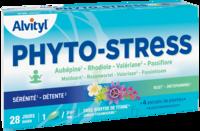 Govital Phyto-stress 28 Gélules à Valenciennes