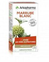 Arkogélules Marrube Blanc Gélules Fl/45 à Valenciennes