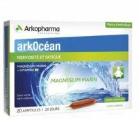 Arkocean Magnesium Marin Solution Buvable Caramel 20 Ampoules/10ml à Valenciennes