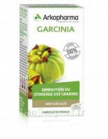 Arkogélules Garcinia Gélules Fl/45 à Valenciennes