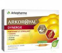 Arkoroyal Dynergie Ginseng Gelée Royale Propolis Solution Buvable 20 Ampoules/10ml à Valenciennes