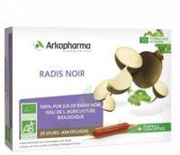 Arkofluide Bio Ultraextract Radis Noir Solution Buvable 20 Ampoules/10ml à Valenciennes