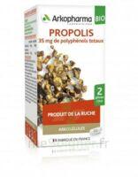 Arkogélules Propolis Bio Gélules Fl/45 à Valenciennes