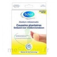 Scholl Coussin Plantaire Douleurs Métatarsales T2