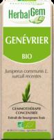 Herbalgem Genevrier Macerat Mere Concentre Bio 30 Ml à Valenciennes