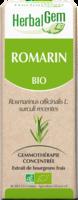 Herbalgem Romarin Macerat Mere Concentre Bio 30 Ml à Valenciennes