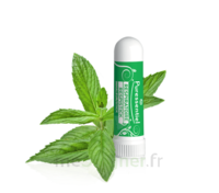 Puressentiel Respiratoire Inhaleur Respiratoire Aux 19 Huiles Essentielles - 1 Ml à Valenciennes