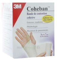 Coheban, Blanc 3 M X 7 Cm à Valenciennes