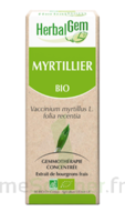 Herbalgem Myrtillier Macérat Bio 30ml à Valenciennes