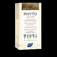 Phytocolor Kit Coloration Permanente 8.3 Blond Clair Doré à Valenciennes