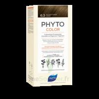 Phytocolor Kit Coloration Permanente 6.3 Blond Foncé Doré à Valenciennes