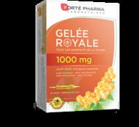 Forte Pharma Gelée Royale 1000 Mg Solution Buvable 20 Ampoules/10ml à Valenciennes