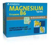 Arkovital Magnésium Vitamine B6 Gélules B/120 à Valenciennes