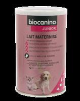 Biocanina Lait Poudre Maternisé B/400g à Valenciennes