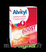 Alvityl Boost Comprimés B/20 à Valenciennes