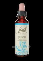 Fleurs De Bach® Original Beech - 20 Ml à Valenciennes