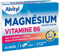 Govital Magnésium Vitamine B6 Comprimés B/45 à Valenciennes