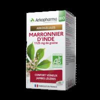 Arkogélules Marronnier D'inde Bio Gélules Fl/45 à Valenciennes