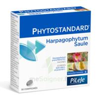 Pileje Phytostandard - Harpagophytum / Saule 30 Comprimés à Valenciennes