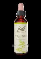 Fleurs De Bach® Original Wild Rose - 20 Ml à Valenciennes