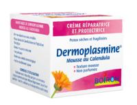Dermoplasmine Mousse Au Calendula à Valenciennes